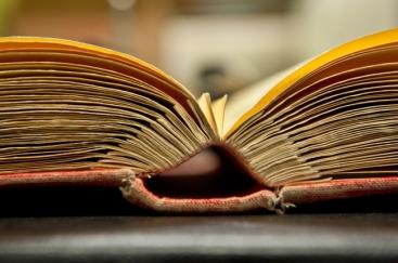 Pages individuelles reliées