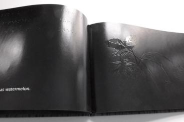The Black Book of Colors, de Melena Cottin et Rosana Faría