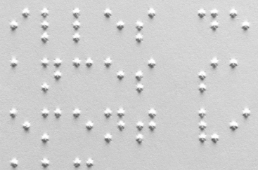 Braille de l'imprimante Tiger